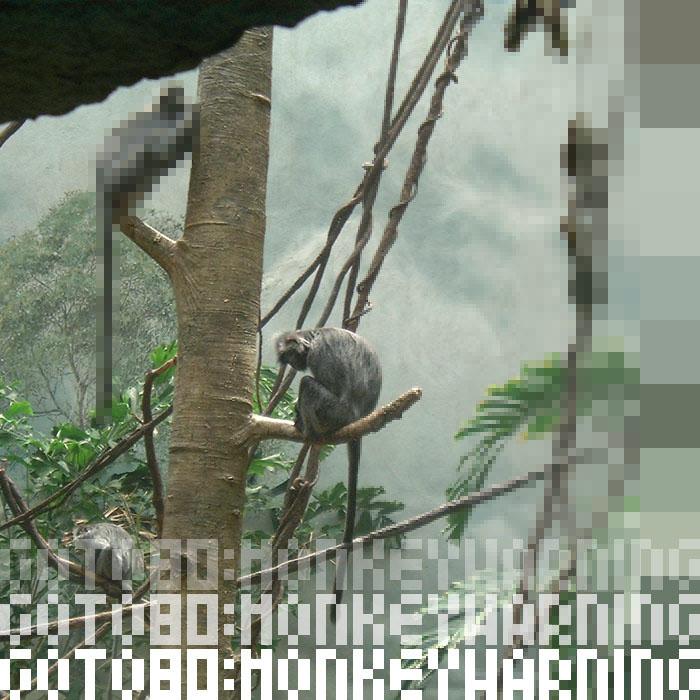Goto80: Monkeywarning (Monotonik MP3)